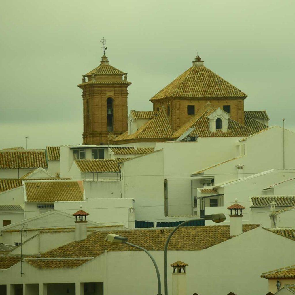 Palenciana (Córdoba) - Aceite de Oliva Virgen Extra
